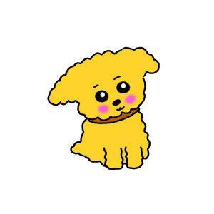 How to Draw a Teddy Bear Dog