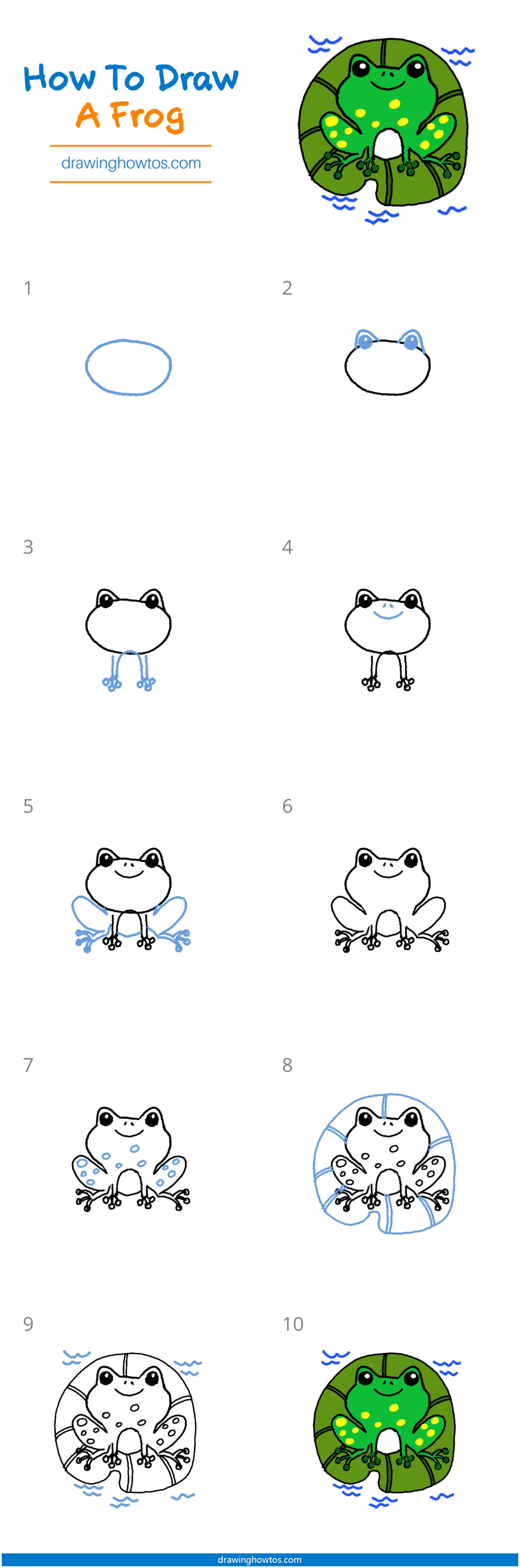 How to Draw a Frog - Step by Step Easy Drawing Guides ...