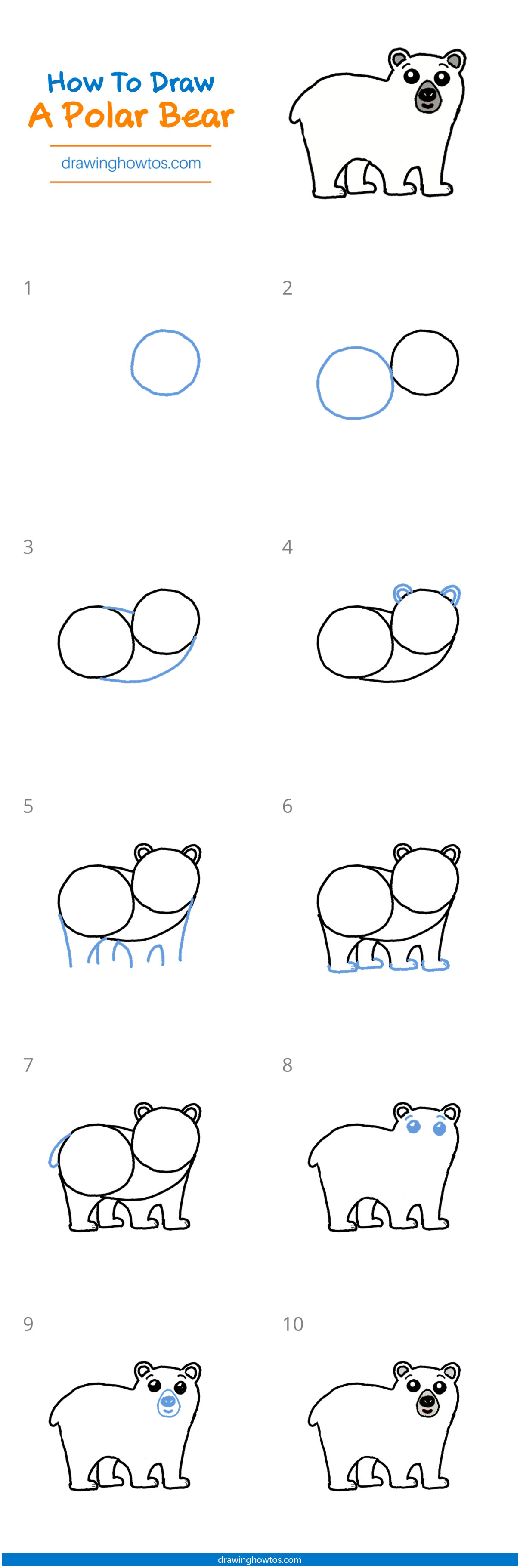 How To Draw A Polar Bear Step By Step Easy Drawing Guides Drawing Howtos