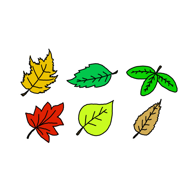 How To Draw Leaves Step By Step Easy Drawing Guides Drawing Howtos